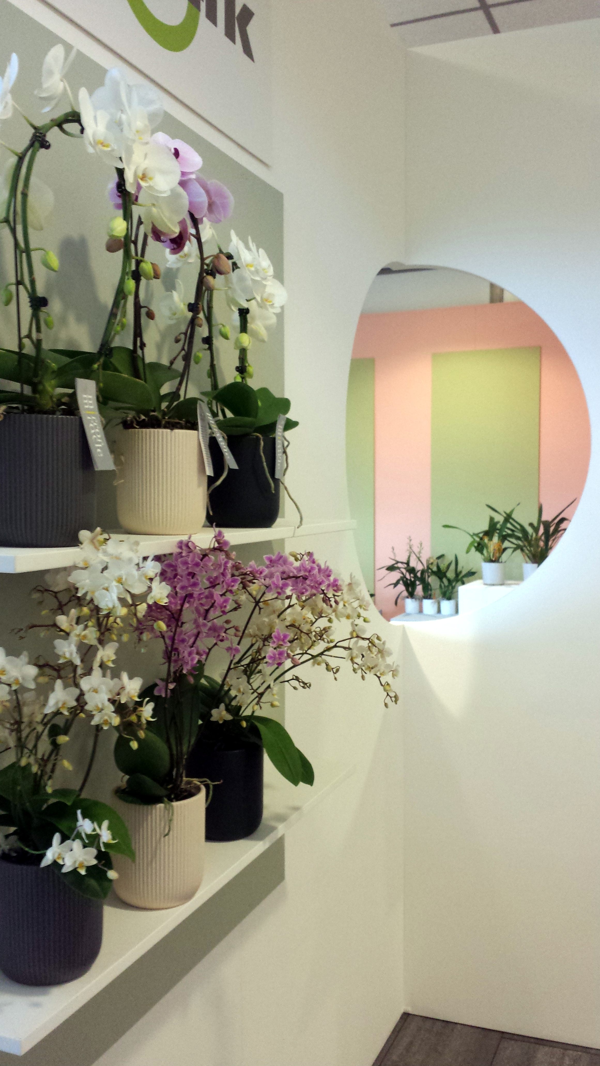 Opti flor inspirationdays 2017 maakmeester for Home decoration meester